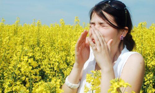 Аллергия - причина синусита