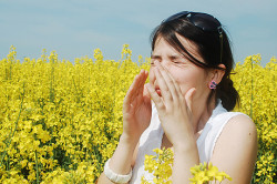 Аллергия - одна из причин заложенности носа