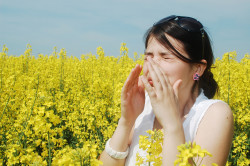 Аллергия как причина водяных течений из носа