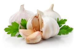 Польза чеснока для лечения насморка
