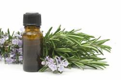 Польза эвкалиптового масла для лечения насморка