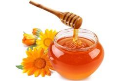Польза меда при лечении гнойного ринита