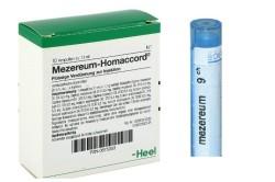Мезереум для лечения гайморита